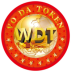 WDT Net work