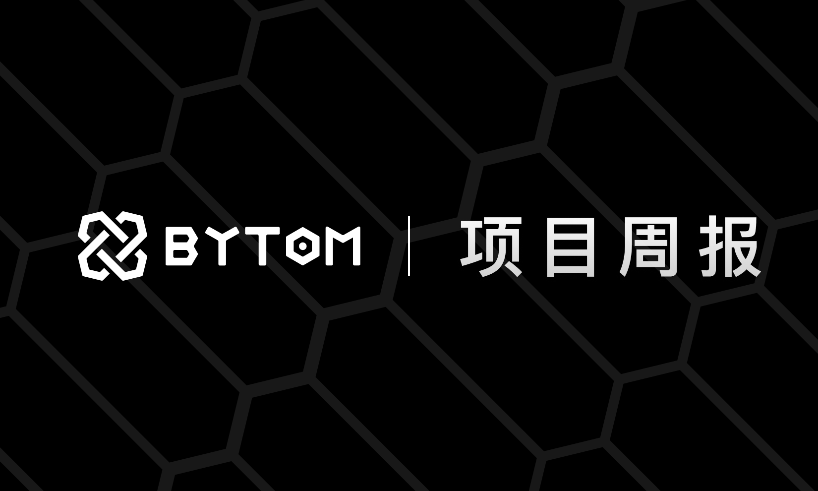 Bytom2.0全网共识节点运行即将升级丨比原链项目周报(第210期)